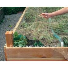 schützen Sie Vogelnetz
