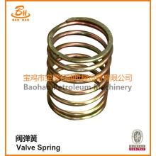 Industri Sprial Custom Valve Compression Spring