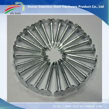Ring/Twist Shank Umbrella Roofing Nails with Good Galvanized