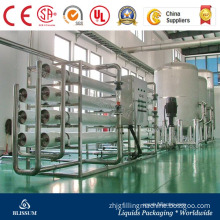 RO 50t Water Purification Plant with Active Carbon Filter Quartz Sand Filter Ozone Sterilizer