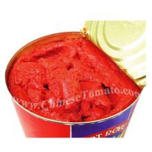 Orgânica saudável enlatada tomate pasta de alta qualidade e baixo preço da China