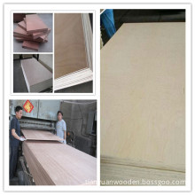 (Best price) Okoume/Bintangor/Plywood Board
