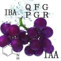 Reguladores del crecimiento vegetal Promotores del crecimiento Ácido 3-indolbutírico (IBA)