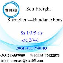 Shenzhen Port Sea Freight Shipping till Bandar Abbas