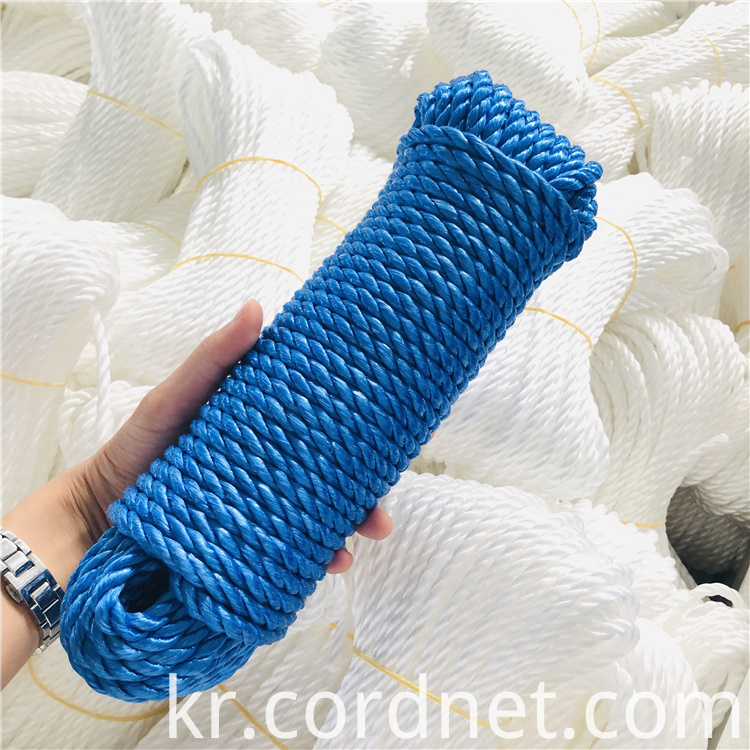 Blue Pp Split Film Rope 1