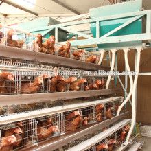 A type hot galvanized chicken cage for poultry farm chicken cage