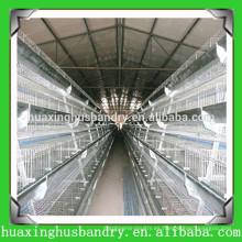 Galvanizado en caliente y hecho en jaulas de pájaros de China