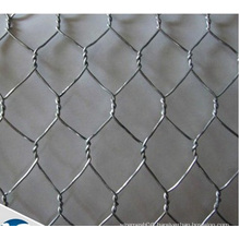 "5/8"" Hexagonal Wire Netting/Chiicken Wire Mesh"