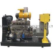 20kw to 135kw Ricardo Diesel Generator