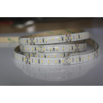 Luz Flexible tira Led 12V 24V CCT Neutral SMD3014