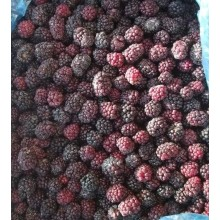 frozen foods frozen vegetables frozen fruits frozen blackberry