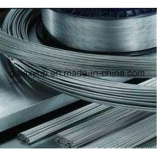 Cable de la bobina de alta calidad titanio para médico
