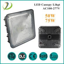 50W Outdoor Canopy Parking lot Lights