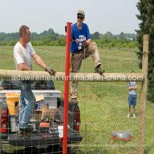 El mejor precio de la cerca de la granja y la cerca de malla de seguridad