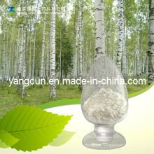 Poudre naturelle Agathosma Betulina 50% 70% 98% Betulin