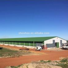 hochwertiges Stahlmaterial vorgefertigte Geflügelbaugebäude Design Huhnbauernhofbau