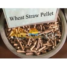 Anillo Die madera pelotilla que hace la máquina molino de pellets de biomasa