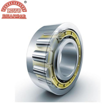 Auto Spare Part of Cylindrical Roller Bearing (NJ 2220 EM)