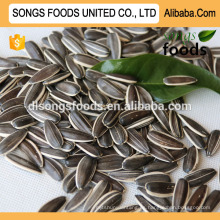 Sunflower Seeds Europe Buyer