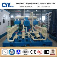 CNG28 Skid-Mounted Lcng CNG LNG Kombi-Tankstelle