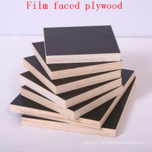 Black Film Faced Plywood / Shuttering Plywood / Marine Plywood
