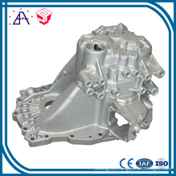 China OEM Manufacturer Aluminum Die Casting Lighting Parts (SY1266)