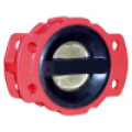 Rubber Coated Check Valve (EPDM/NBR/VITON Seat)