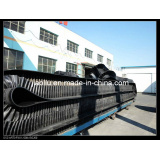 Corrugated Sidewall Conveyor Belt System (Sidewall - cleats002)