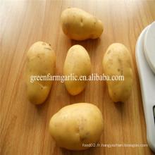 Type de produit de pommes de terre et pomme de terre chinoise de style frais