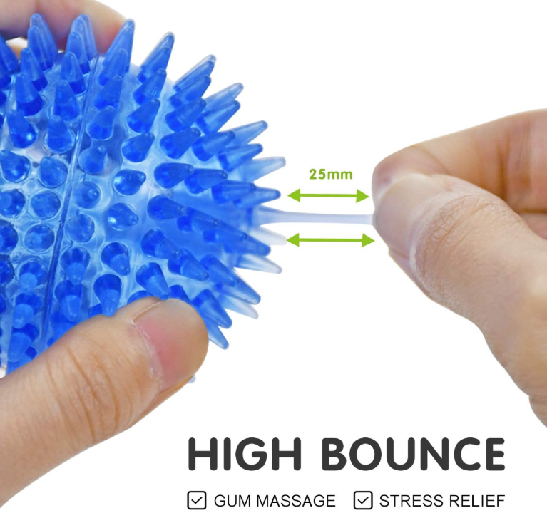 Squeaky Dog Balls Toy