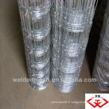 Holland wire mesh (usine)