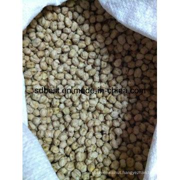 8mm Kabuli Chickpeas From China