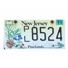 Custom Decorative Plate with Reflective Film, Car Number Plate