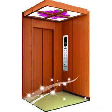 VVVF control petit ascenseur élévateur à domicile