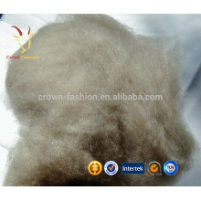 Grey Pure Mongolian Dehaired Raw Cashmere Wool Fiber