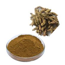 Pure natural Chinese herbal medicine Morinda officinalis extract powder
