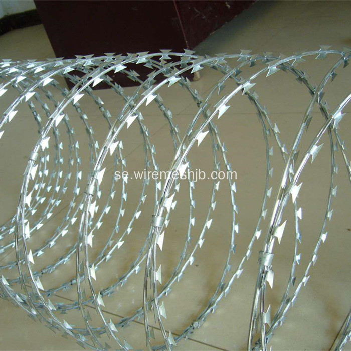 Razor Wire Fence-Concertina Coil Typ