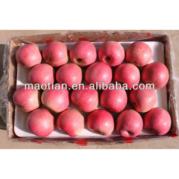 High Quality Qinguan Apple
