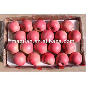 High Quality Qinguan Apple