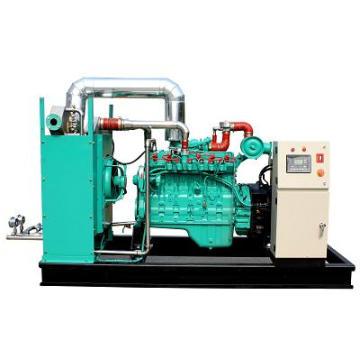 Grupo de gerador pequeno do gás da CA do motor de 20kw Googol