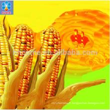 Boa qualidade máquina de milho extrato de óleo de embrião de milho