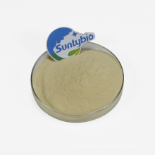 ISO Factory Animal Feed Additive Best Price Buy Bacillus Subtilis