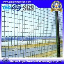 Clôture de maille métallique revêtue de poudre / revêtement en PVC avec (CE et SGS)