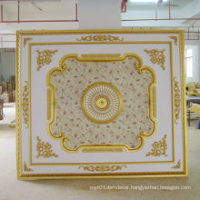 Artistic Ceiling Panel for Hotel Decoration