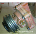Weichai Huafeng Diesel Engine Water Pump R105 Serious
