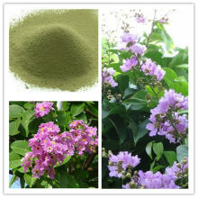 Banaba Leaf Extract Corosolic Acid(Glucosol)