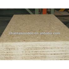 OSB 3 plywood(4x8 plywood)