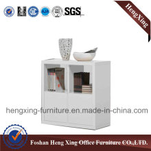 Office Furniture / File Cabinet / Bookcase / Storage Cabinet (HX_FL0048)