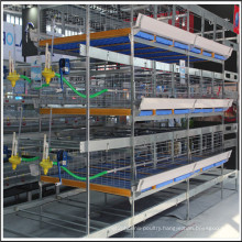 Poultry Equipment Chicken Farm Building H Type Broiler Battery Cage