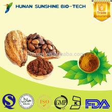 Poudre de fève de cacao de matière première pour l'ingrédient d'aliments et de boisson